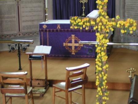 daffodil_cross